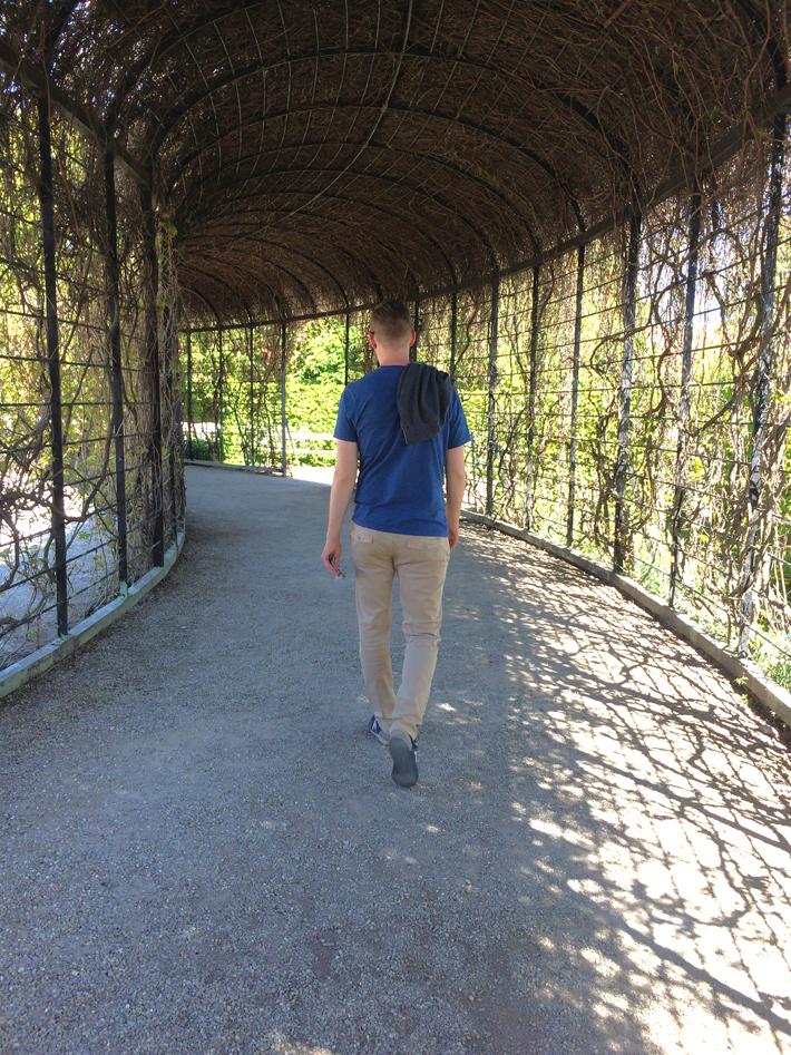 D walking_Vienna