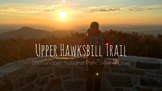 Upper Hawksbill Trail Shenandoah Skyline Drive