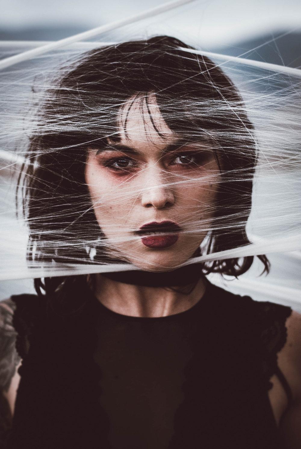 Julia Spider (3).jpg