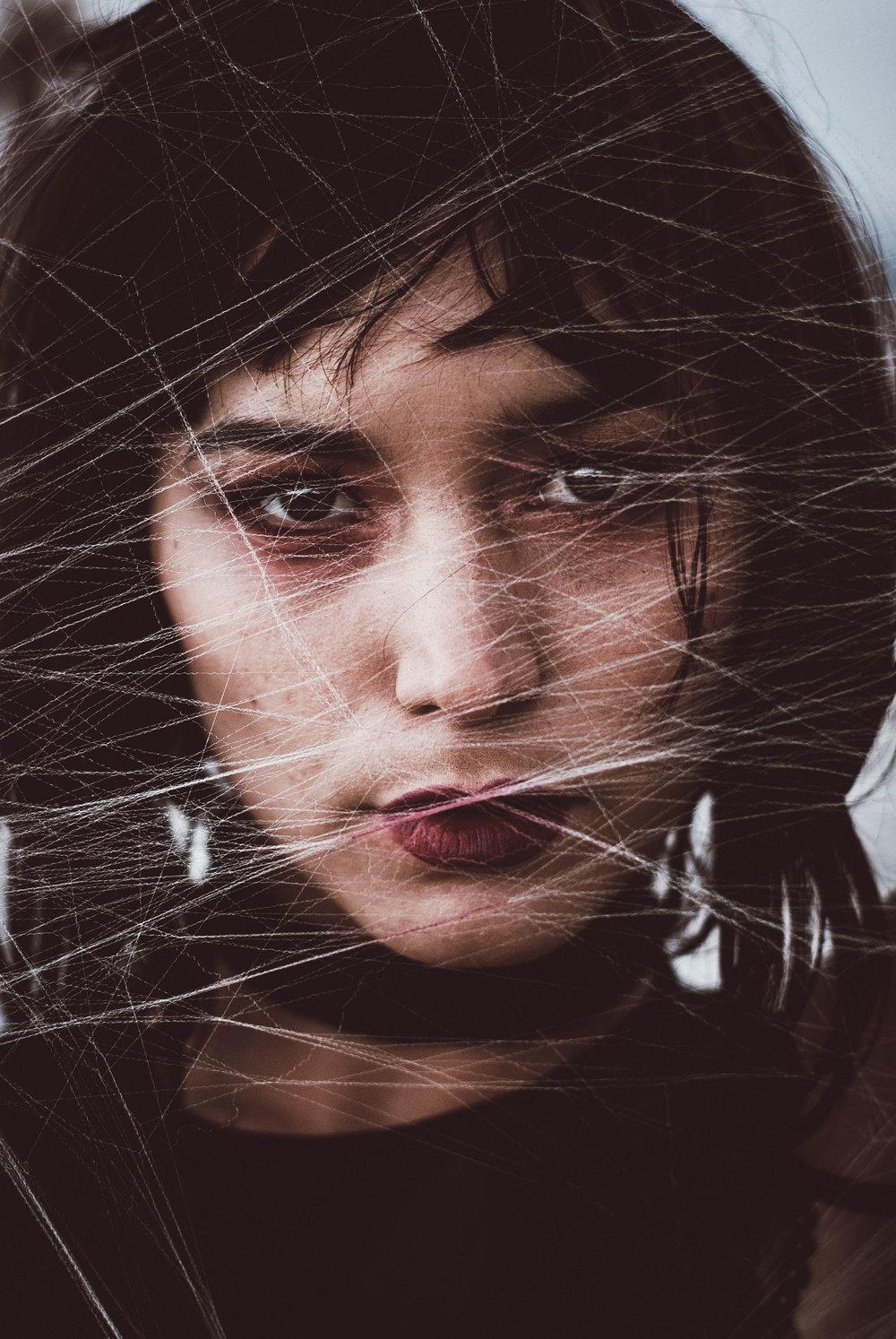 Julia Spider (7).jpg