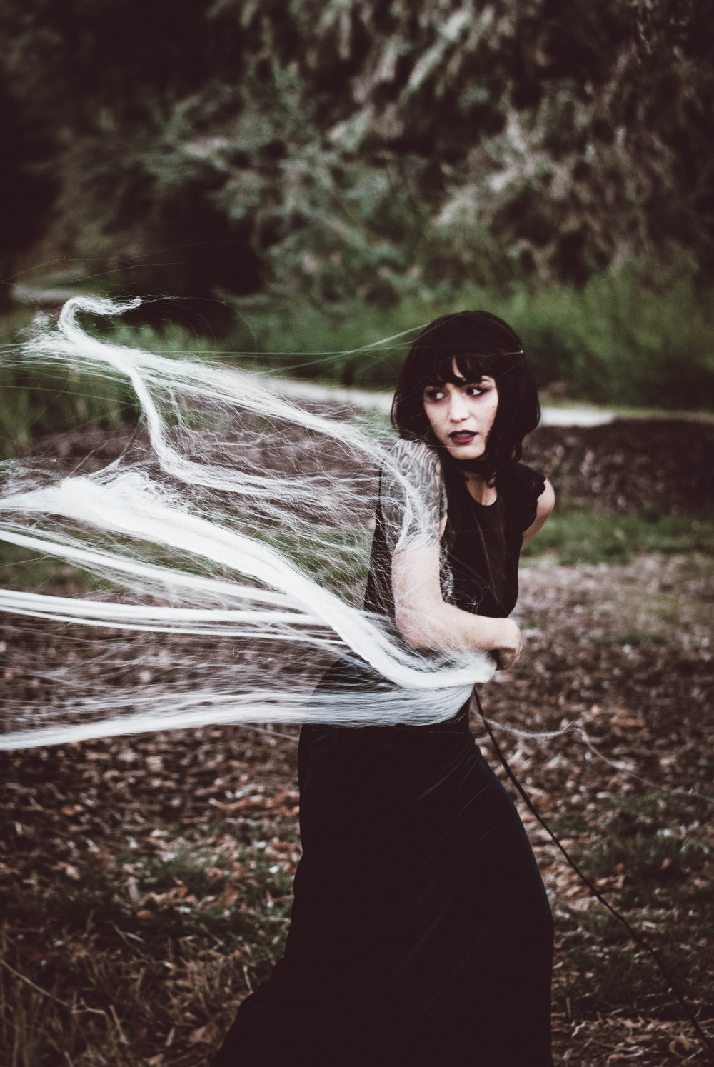 Julia Spider (24).jpg