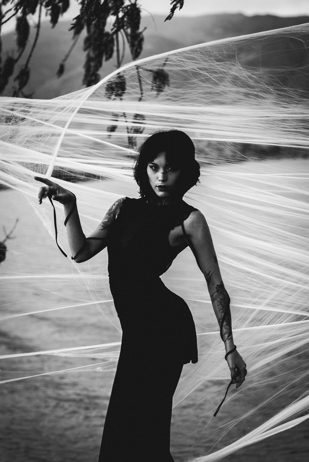 Julia Spider (34).jpg