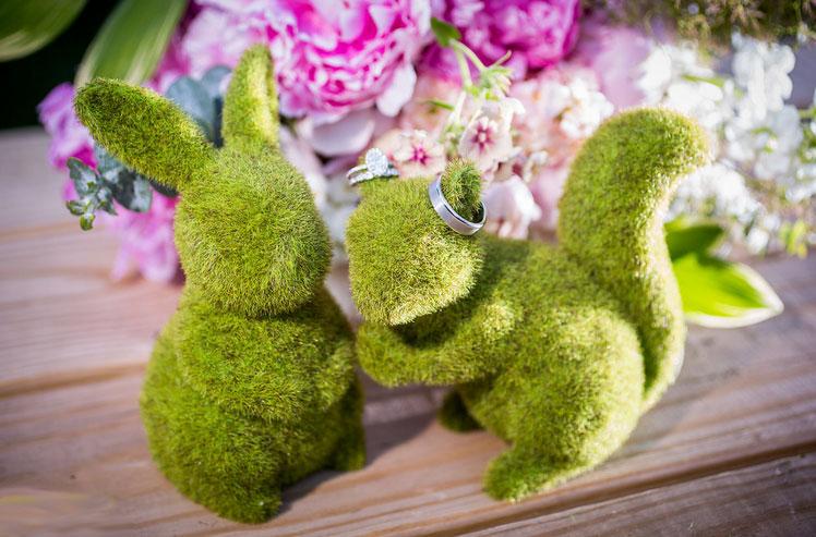 Bunny.Sq..jpg