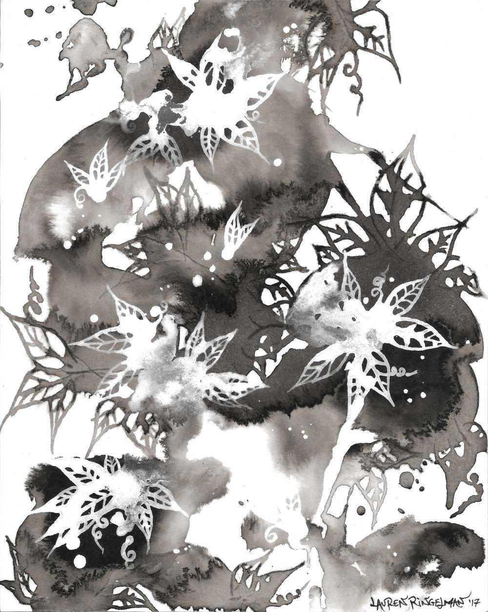 L.Ringelman.CloudForest1.jpg
