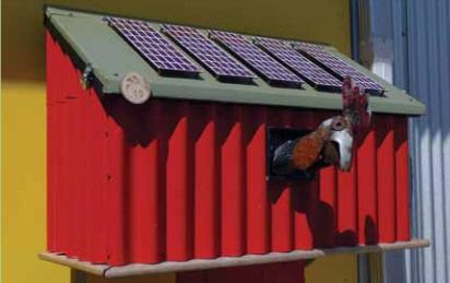 solar chicken.jpg