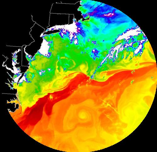 MODIS image