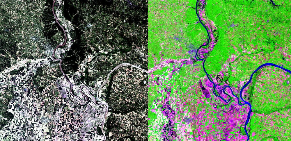 Natural color (left) and false color (right) composite images taken from the Landsat 8 satellite in June 2017 (Images were downloaded from EOS' Land Viewer at https://lv.eosda.com/). Dominant features shown are the Mississippi River, and a mixture of farmland and other forms of natural vegetation. In the false color image on the right, crops are more shown in a purple colour, which is possible by taking into account near-infrared radiation, a form of energy not detectable by the human eye.