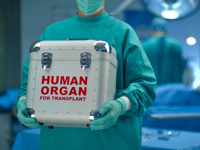organ-transplant.jpg