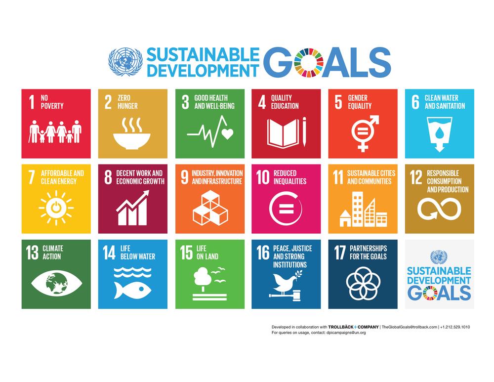E SDG Poster_-Letter.jpg