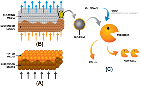 how-biofiltration-works.png
