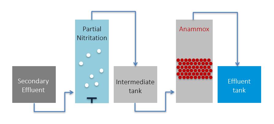 amx-reactor.PNG