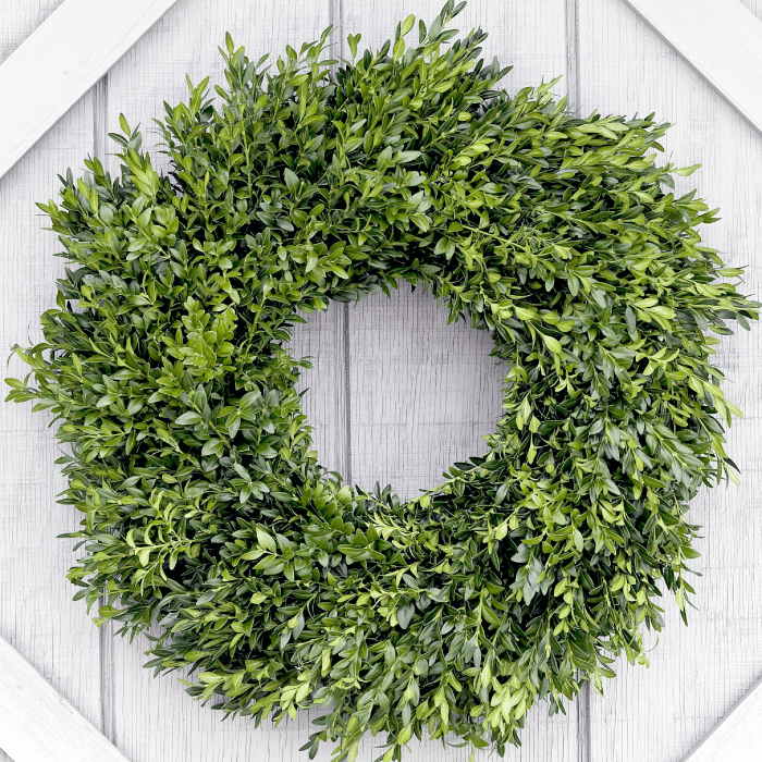 boxwood wreaths.png