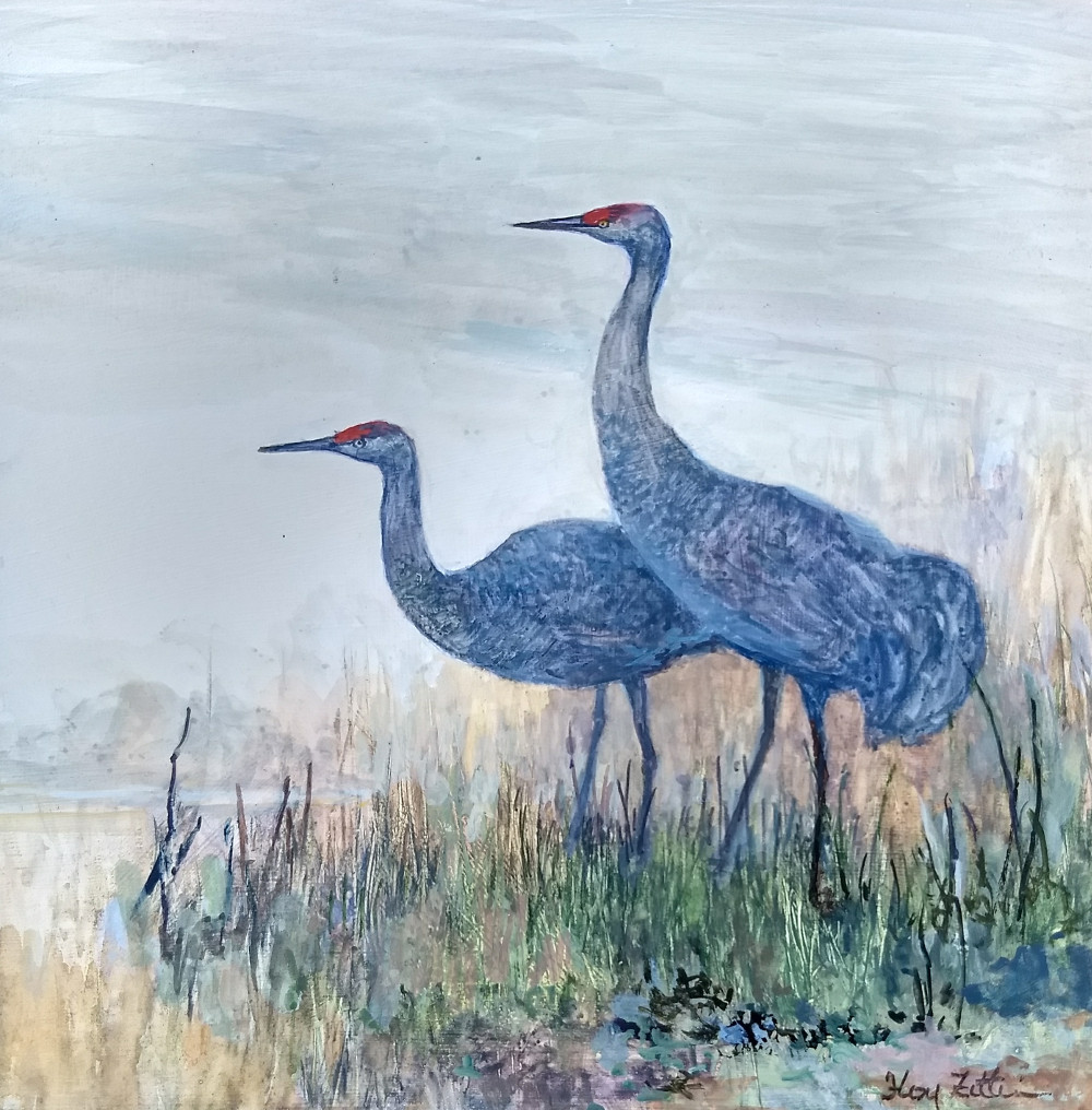 Sandhill Cranes 8 x 8.jpg