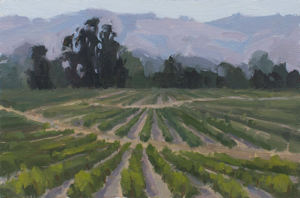 Sonoma Vineyards 6x9 .JPG