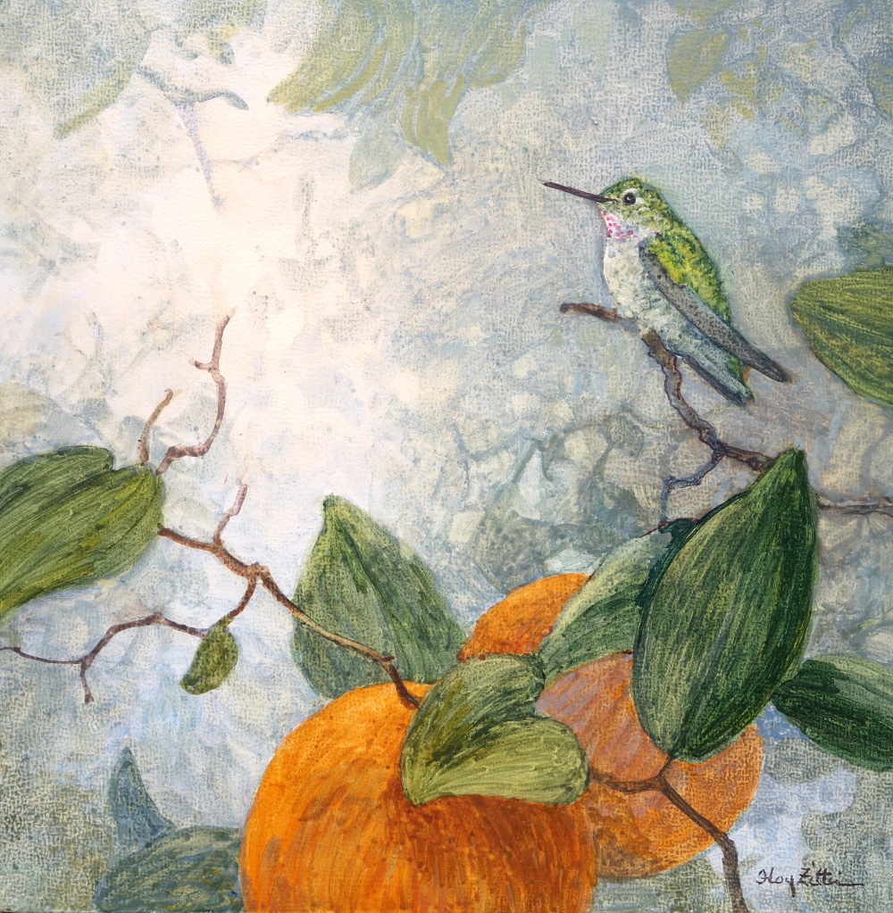 Hummingbird and Oranges.JPG