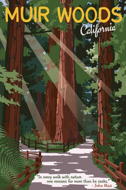 Muir Woods paper framed.jpg