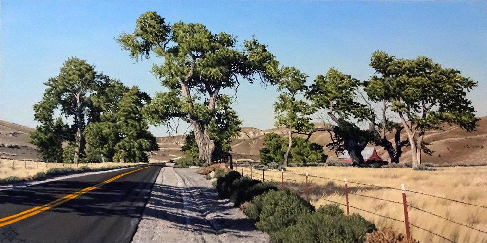 The Defiant Cottonwoods 36 x 18.JPG