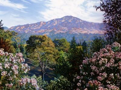 Mt. Diablo Morning.jpg
