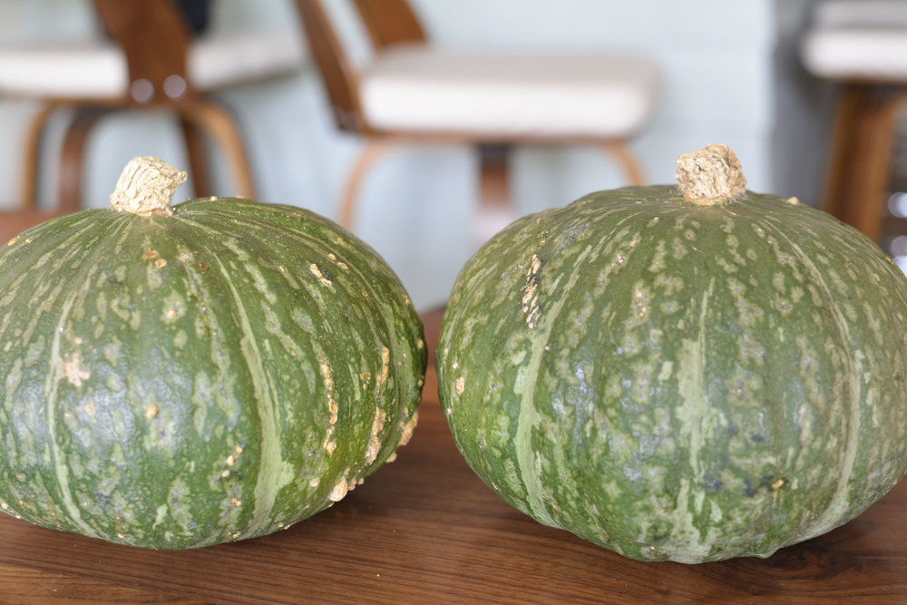 California Local Squash