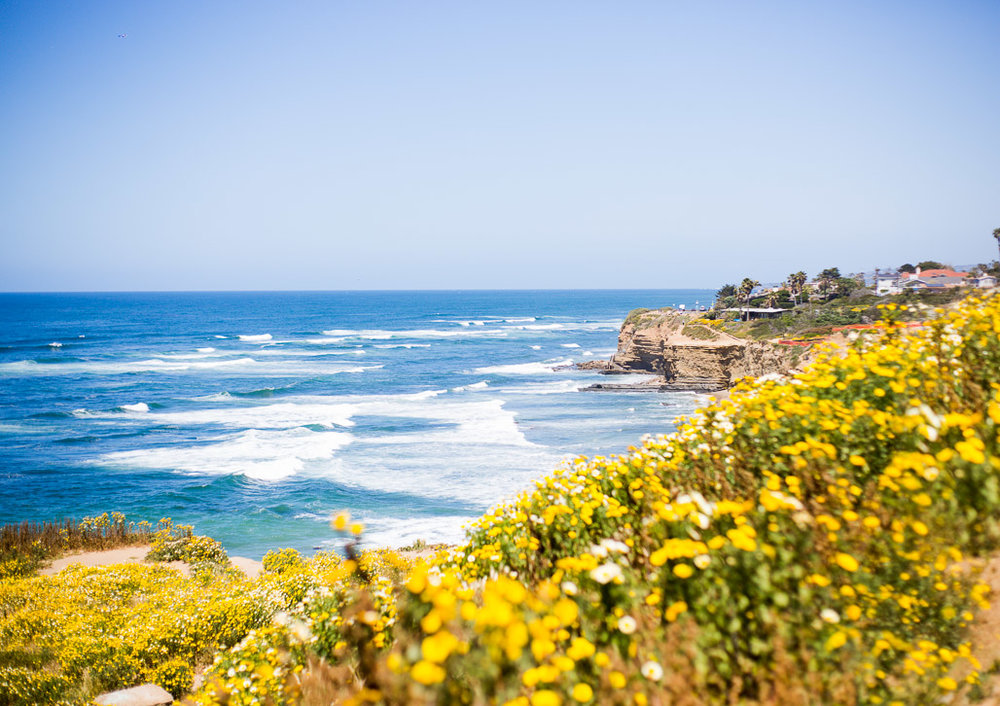 _Montgomery_Kruse_Wedding_SanDiego-38.jpg