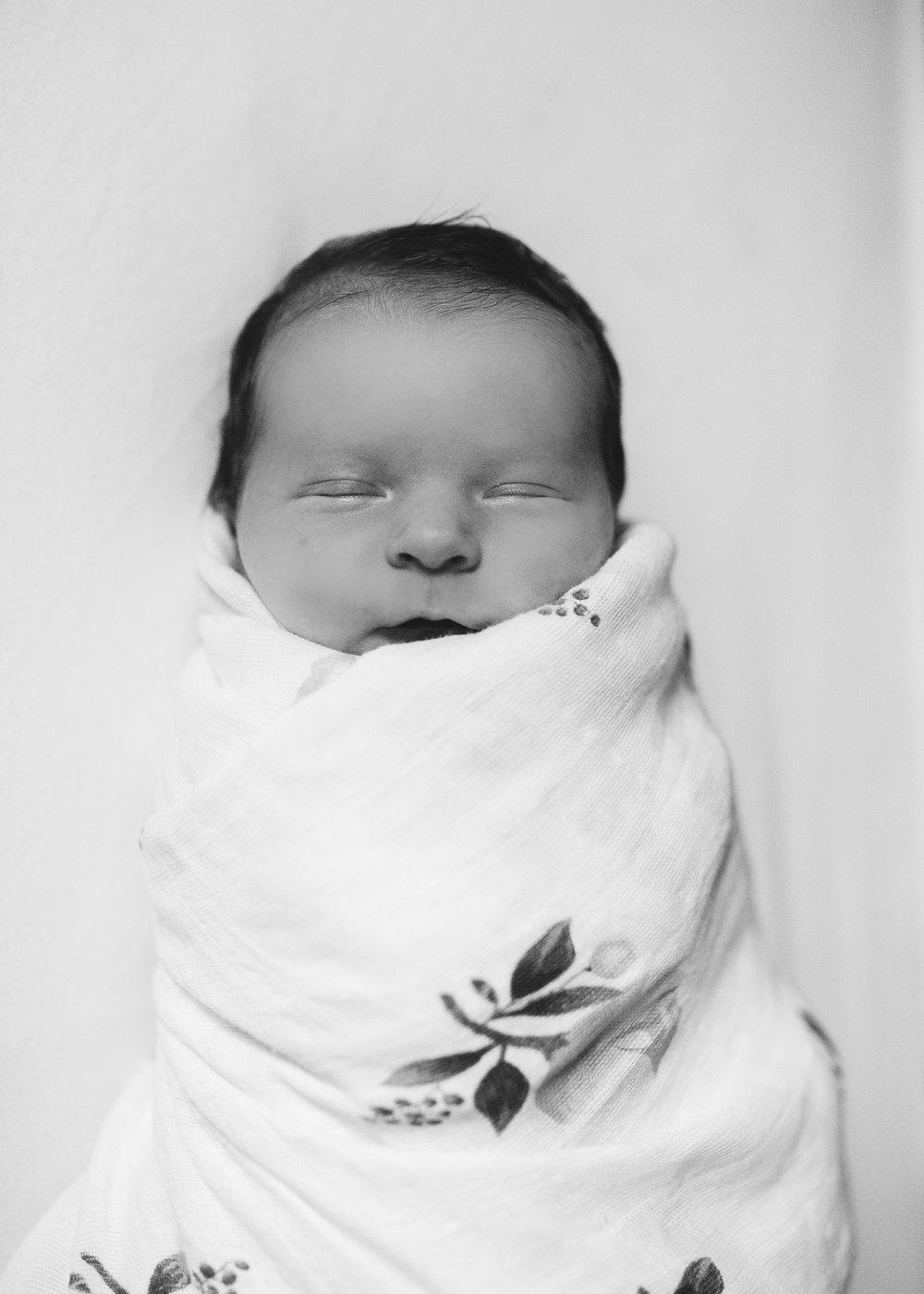newborn lifestyle family photographer River Falls WI