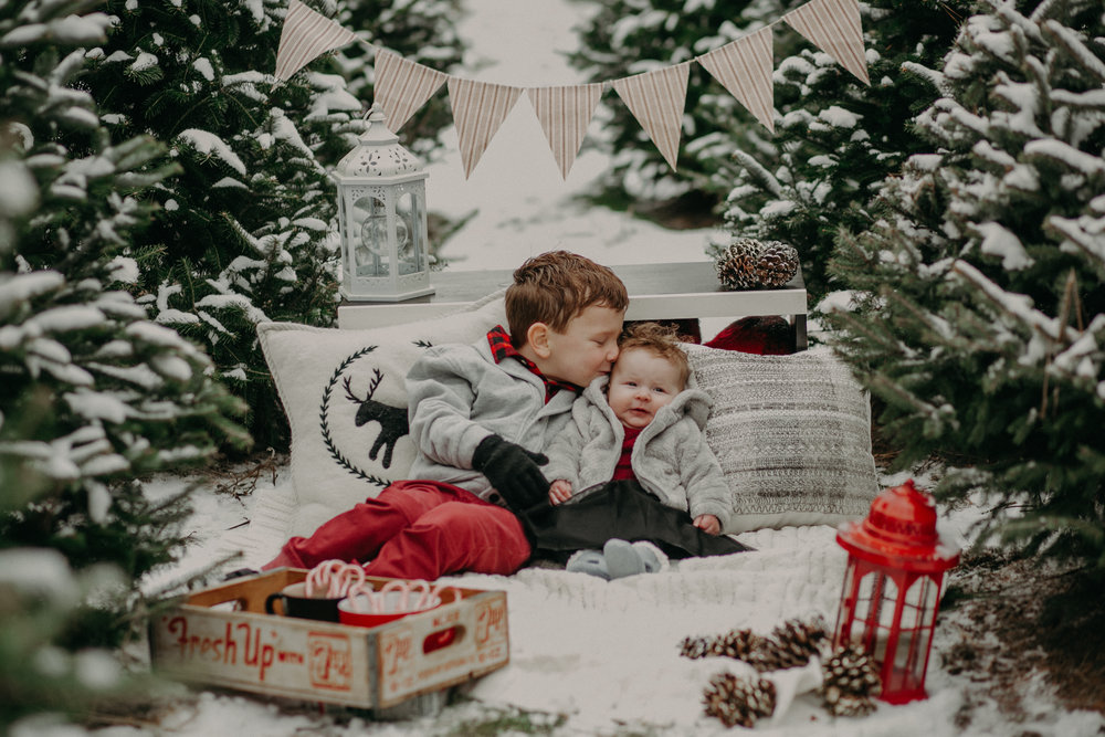 brother kissing baby sister at a Christmas tree farm photo session in Hudson WI