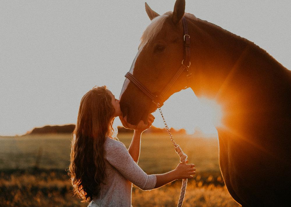 marshfield-wi-senior-photographer-stichert-equestrian