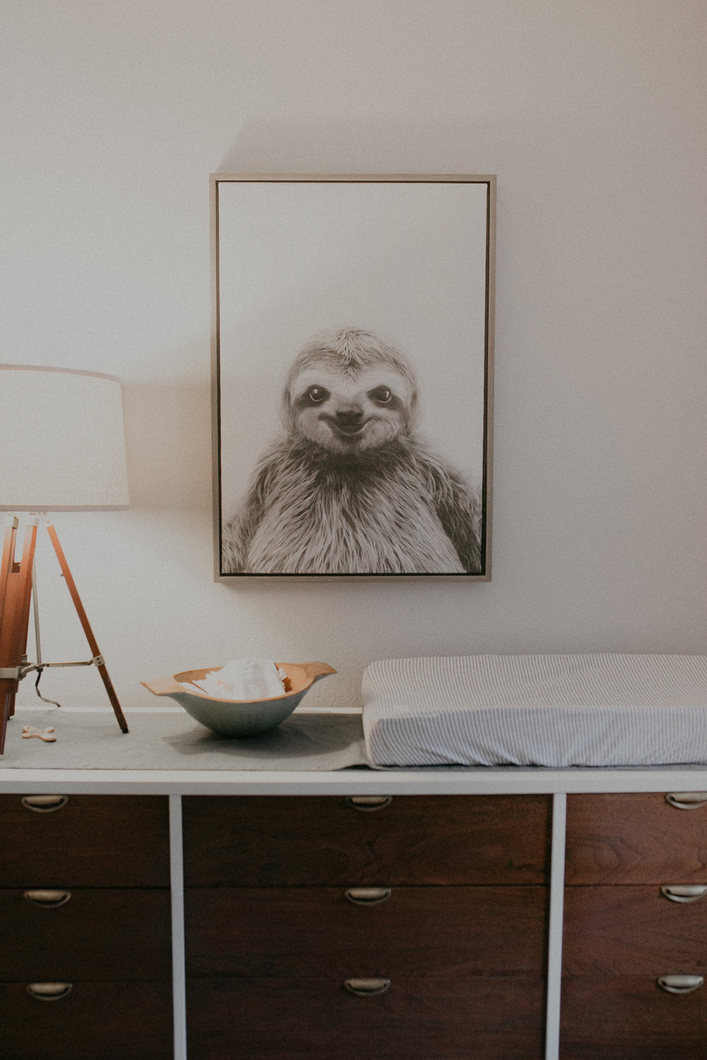 sloth-nursery-river-falls-lifestyle-photographer