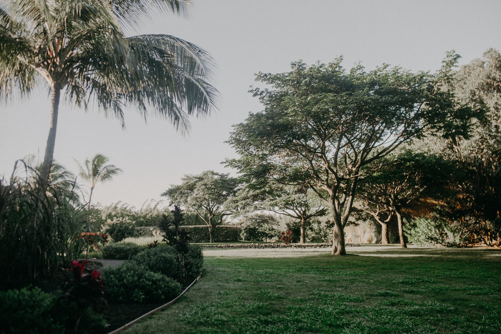 lumeria_maui_hotel_grounds_stay