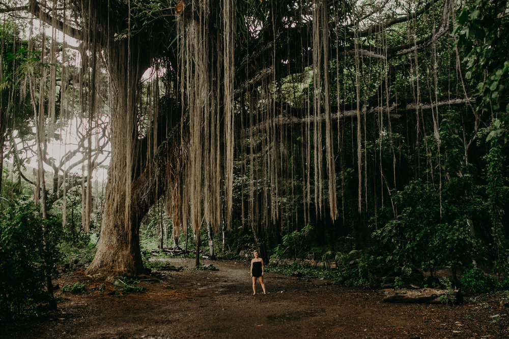a small beautiful woman stands under an incredible tall banyon tree on Maui