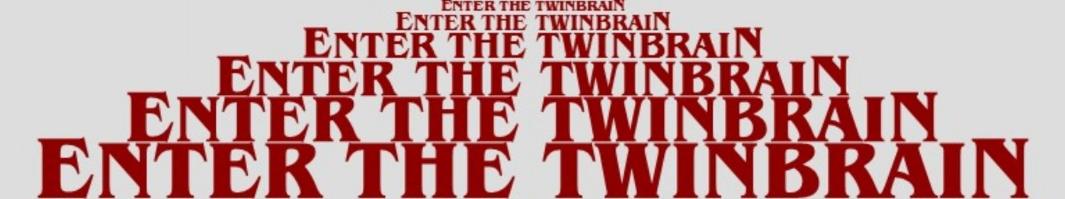 ENTER THE TWINBRAIN