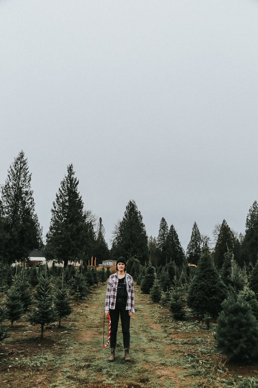christmastree-16.jpg