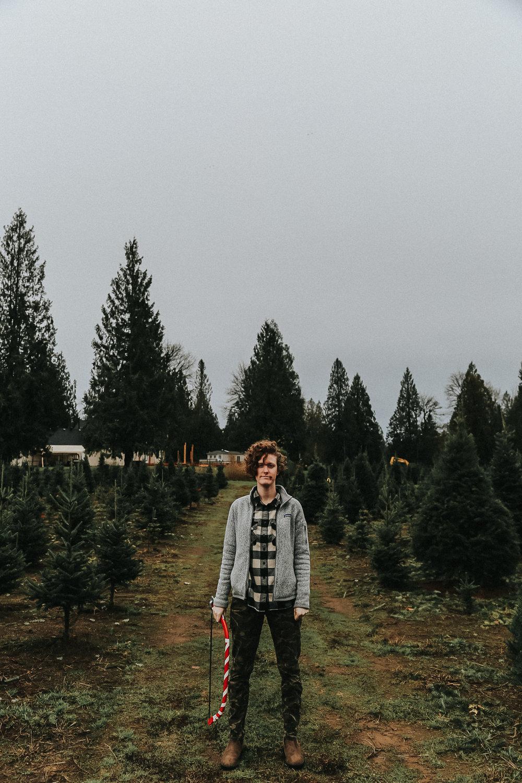 christmastree-14.jpg