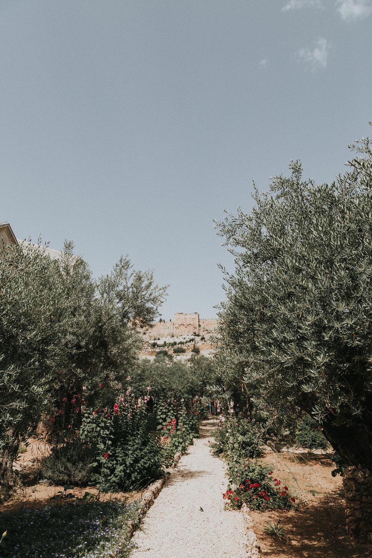 israeledits-8.jpg