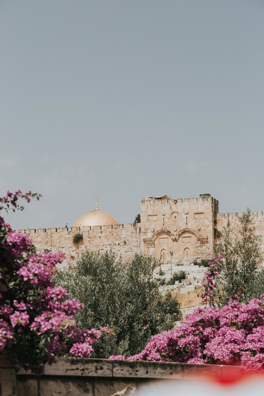 israeledits-14.jpg