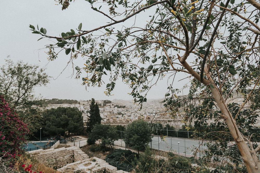 israel-5.jpg