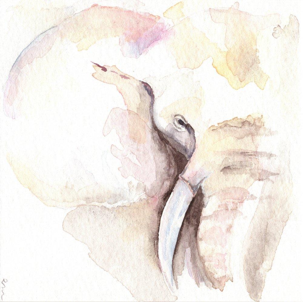 Helen's Elephant