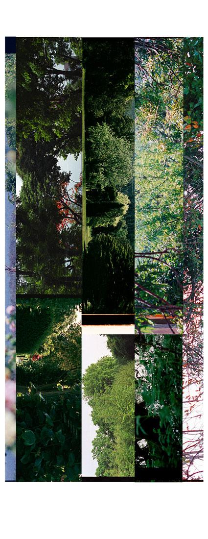 Garden Fragments 2008-2013. Archival Inkjet Print on Hahnemühle Photo Rag. 10x55cm. Edition of 5 + 2AP.