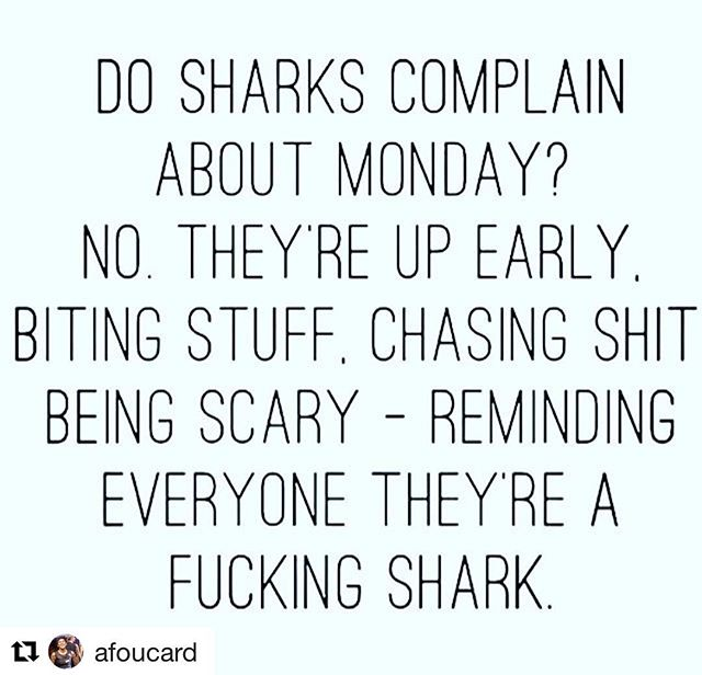 Thank you, @afoucard! ・・・ Yes, it's a repeat...But, it's so good! Thank you , @angelngreen! #mondaymotivation #quotes #quotesaboutlife #beashark #shark #sharklife
