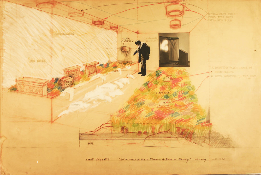 Juan Downey,  Life Cycle: Soil + Water + Air ­= Flowers + Bees = Honey , 1972. Graphite, colored pencil, and collage on paper, 40 x 60 inches. Courtesy of the Estate of Juan Downey, New York.