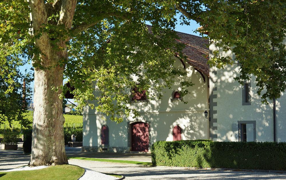 Chateau Allman guest house.jpg