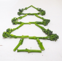 Broccoli Christmas Tree.  Nutrition. Healthy Choices.