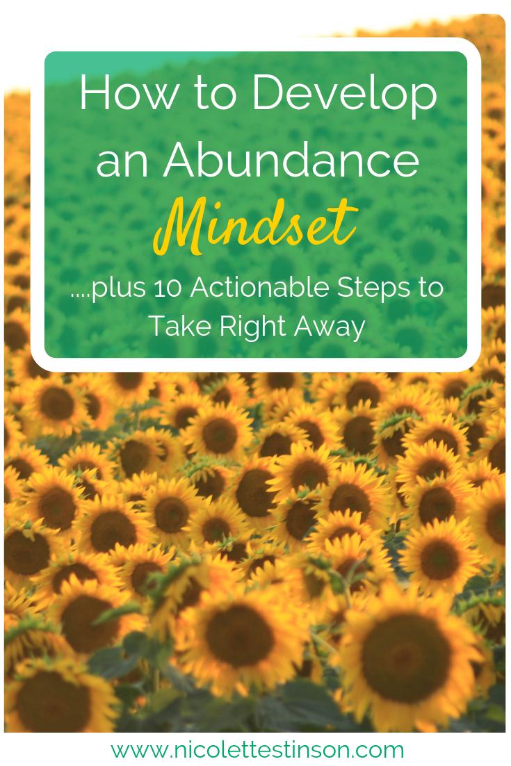 Abundance Mindset Blog.png
