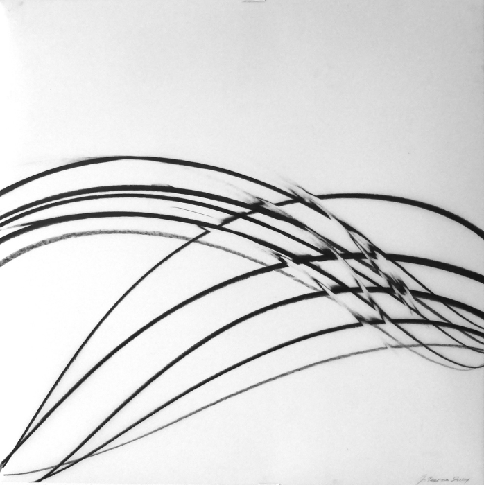 Jaanika Peerna  Undulations 4 , 2014 pigment on mylar 14 x 14 in.