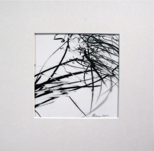 Jaanika Peerna  Alphabet of Lines Series , 2009 wax pencil on mylar 4 3/4 x 4 3/4 in.