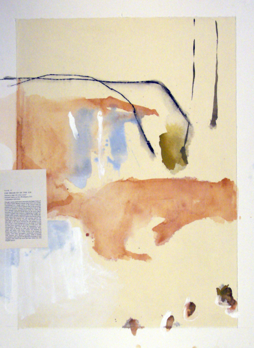 Michael Rich  Breaking the Ice , 2009 mixed media on paper 30 x 22 in.