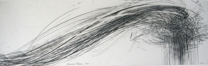 Jaanika Peerna  Storm Series #49 , 2011 graphite and color pencil on mylar 11 x 36 in.