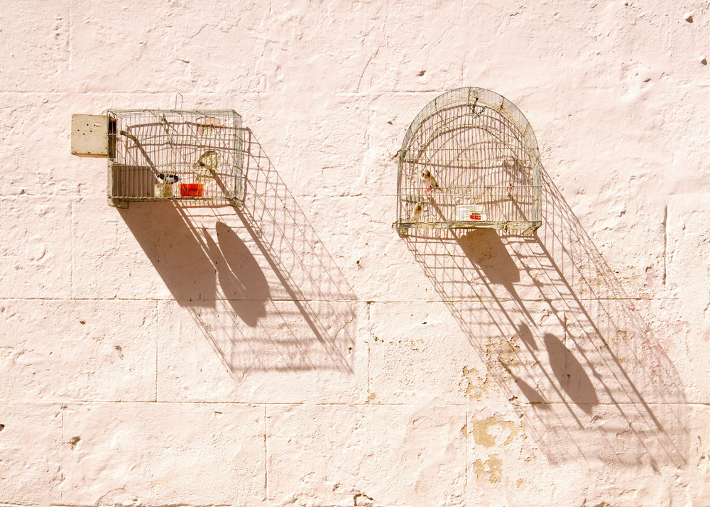 Geoff Reinhard  Bird Cages- Cuba  (Havana),  2012  archival pigment print 30 x 44 in. additional sizes available editions of 15