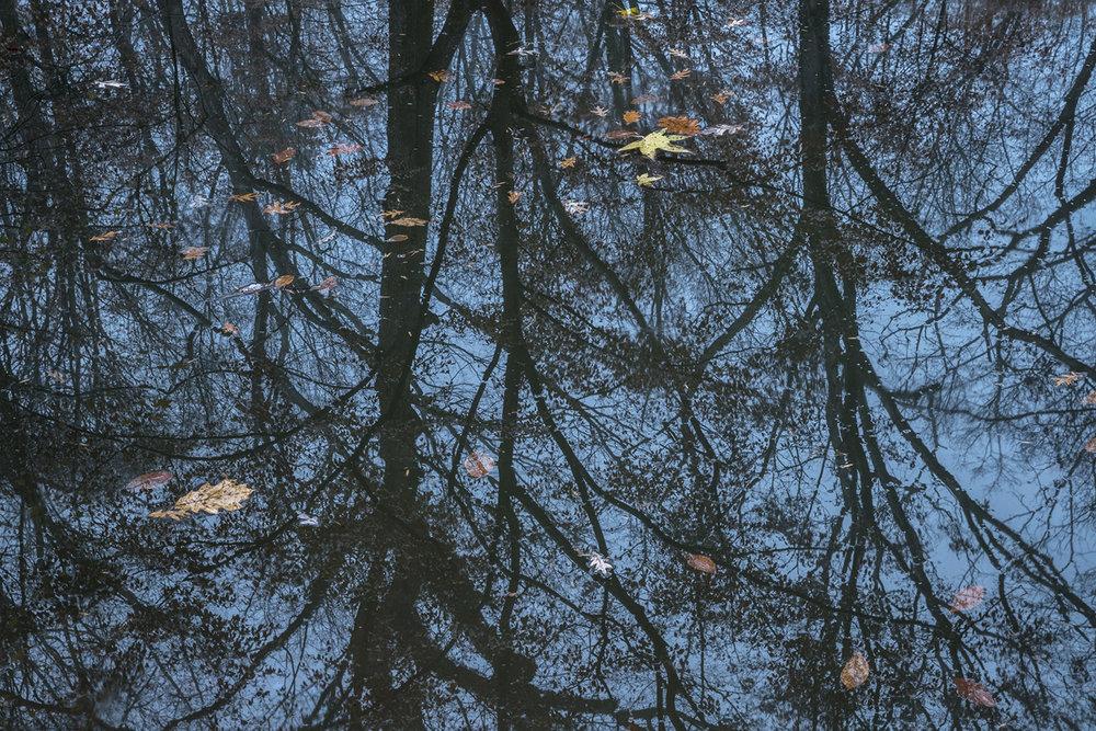 030_Pond.jpg