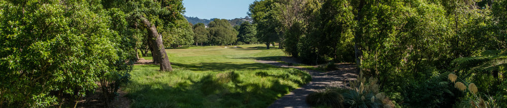 Royal-Wellington-Hole-17-banner.jpg